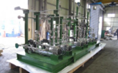 Ammonia Injection System (for Pttchem Power Plants THAILAND)